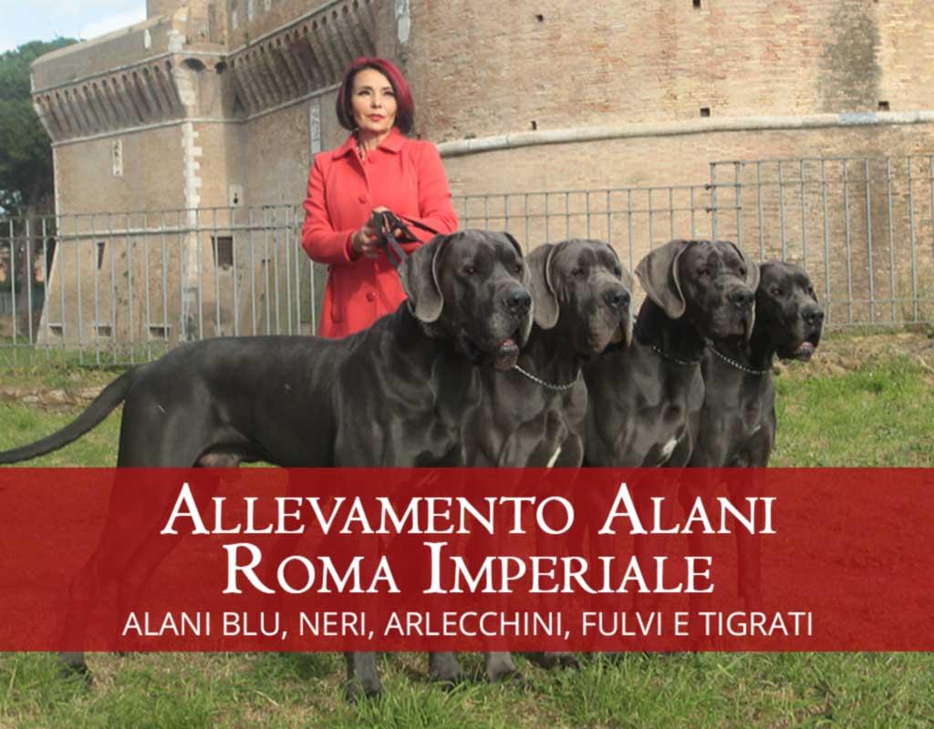 Allevamento Alani Roma Imperiale